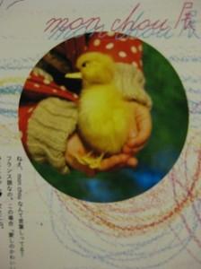2013/2/13~2/18 鳥、蝶、超、mon chou(絵本と絵画)展